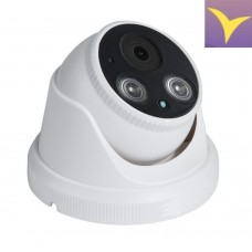 Network dome IP camera 5.0 Mpix (2592 x 1944) IP039