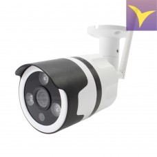 Network IP camera Wi-Fi with a flash card 5.0 Mpix (2592 x 1944) IP012